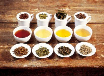 Tous les types de thés