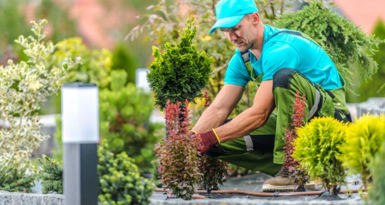 faire entretien jardin