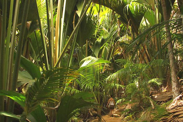 séjour nature aux Seychelles